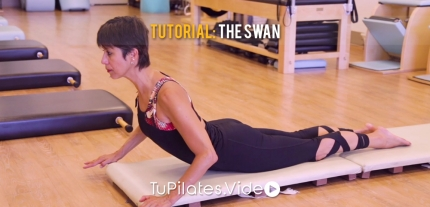 Tutorial: The Swan